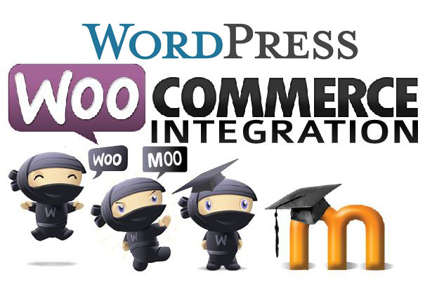 Wordpress and Woocommerce integration with Moodle