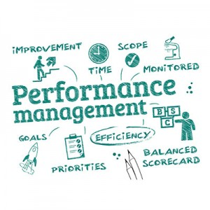 PERFORMANCE MANAGEMENT in LMS