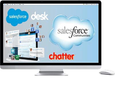 Salesforce LMS