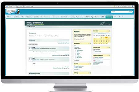 salesforce learning management system