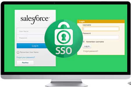 salesforce lms integration single sign on