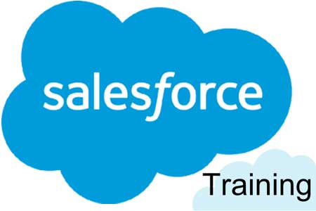 LMS Salesforce