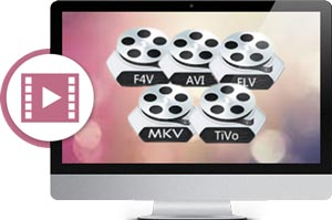 Supporting Video Formats