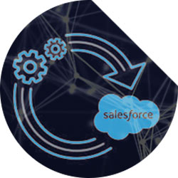 Salesforce Integration with SIS