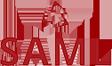 logoSaml