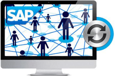 Sync Employee Data with SAP ERP LMS integration
